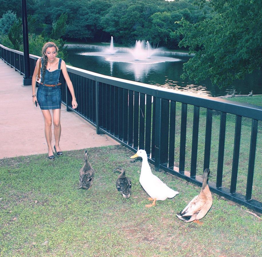 Duck pond Arboretum